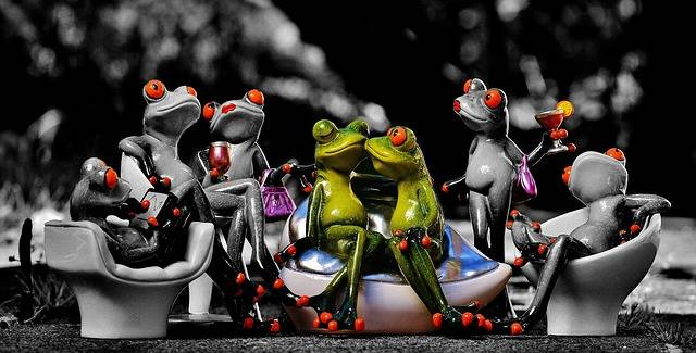 Free photo: Frogs, Party, Celebrate, Funny - Free Image on Pixabay - 1421183 (3689)