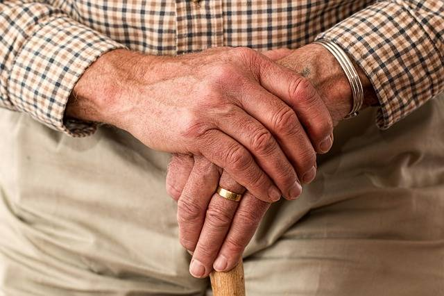 Free photo: Hands, Walking Stick, Elderly - Free Image on Pixabay - 981400 (5056)