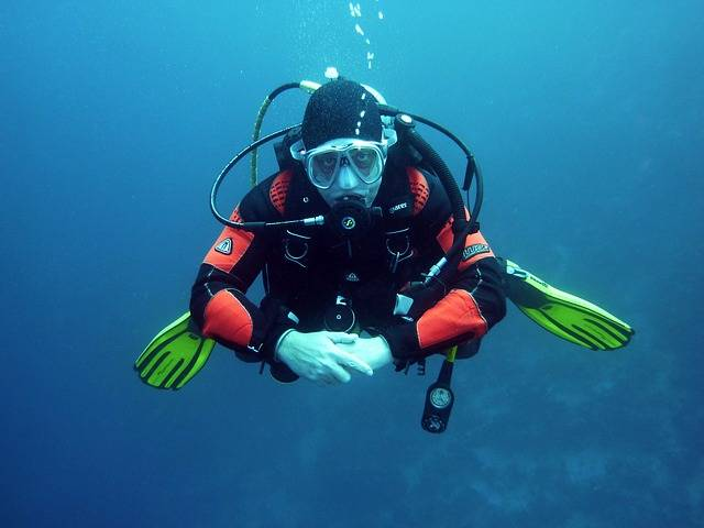 Free photo: Divers, Scuba Divers, Diving - Free Image on Pixabay - 668777 (6194)