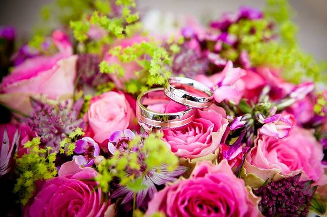 Free photo: Flowers, Wedding, Wedding Rings - Free Image on Pixabay - 260894 (6209)