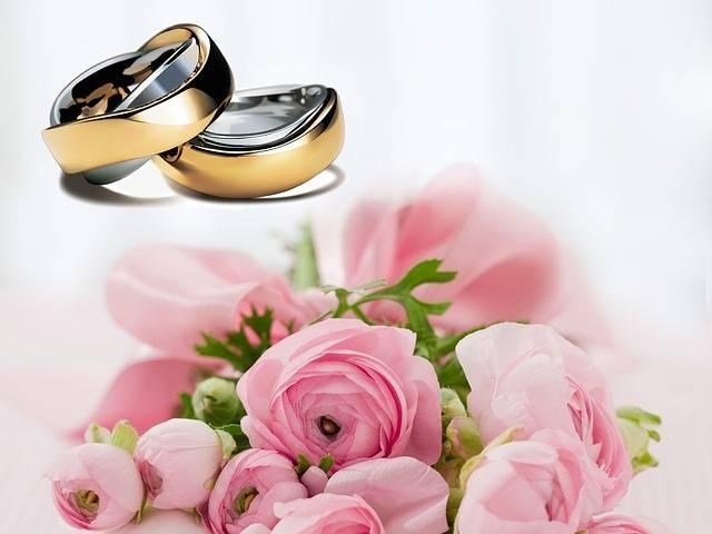 Free photo: Wedding Rings, Wedding, Before - Free Image on Pixabay - 251590 (8252)
