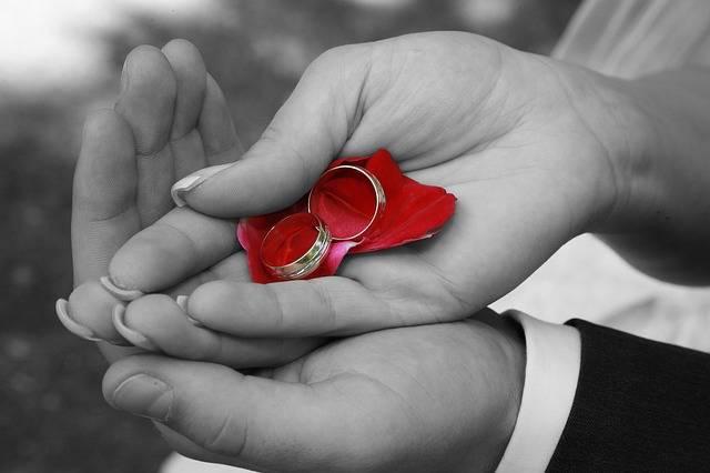 Free photo: Wedding, Wedding Rings, Hands - Free Image on Pixabay - 688916 (12559)