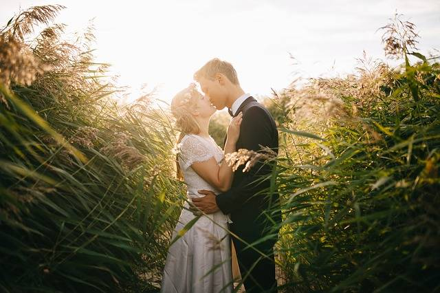 Free photo: Bride, Couple, Grass, Groom - Free Image on Pixabay - 1867228 (14167)