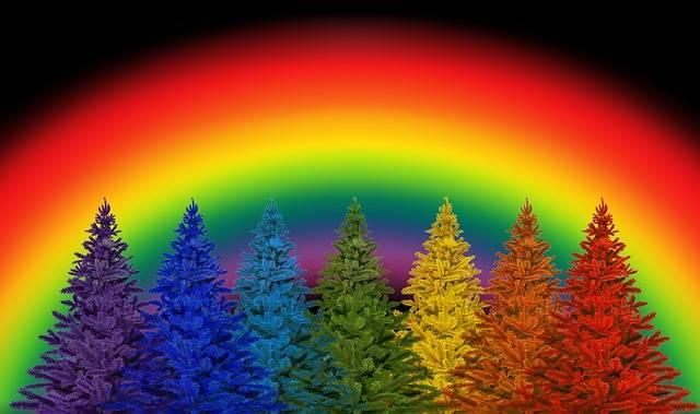 Free photo: Christmas, Colorful, Rainbow Colors - Free Image on Pixabay - 2893686 (17143)