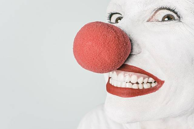 Free photo: Clown, Comedian, Nose, Circus - Free Image on Pixabay - 362155 (871)