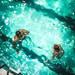 水泳のストレッチ方法8選!準備運動や柔軟のやり方のご紹介