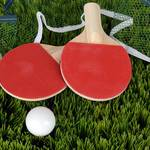 卓球初心者のおすすめラバー10選と気になる選び方とは?