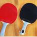 卓球ラバーの種類!分かりやすい特徴の比較と選び方【初心者ガイド】