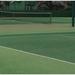 テニスの上達法!上手くなるため方法とは?上達しない人は理由がある【テニスコーチ監修】