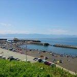 厚田漁港の釣り情報まとめ!おすすめのポイントや期待の釣果とは?