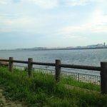 京浜島つばさ公園の釣りポイント4選!釣果をあげる攻略法とは?