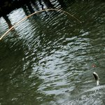 札幌の釣り堀10選!気軽にヤマメやニジマス釣りを楽しもう