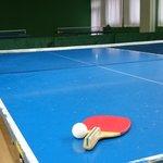 卓球の歴史とは?ルールやラケットの歴史や発祥国や起源・始まりはいつから?