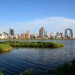 淀川のバス釣りポイント6選!50センチを超える大型の釣果を狙おう