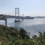 徳島でアオリイカを釣る方法とは?おすすめのエギングポイント5選