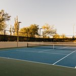 ソフトテニスの歴史とは?発祥国や起源・始まりはいつから?【軟式】