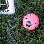ゴールラインテクノロジーとは?サッカーのゴール判定技術が凄い!