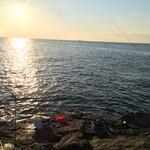 秋に釣れる魚とは?9月・10月・11月に狙える魚種