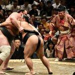相撲の歴史とは?始まりの起源や番付・横綱の歴史を解説!