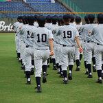 埼玉県の野球の強豪高校とは?強さ順に10校をランキングで紹介!