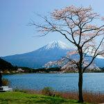 静岡県のバス釣りポイント6選!初めて行く人はどこがおすすめ?【釣り場情報】