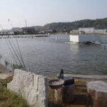 茨城県のバス釣りポイント10選!初心者におすすめなおかっぱり・野池とは?【釣り場情報】