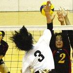 【埼玉県】バレーボールの強い中学校10選!強豪中学を男子と女子に分けて紹介