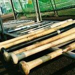 竹バットの凄さとは?木製バットと金属バットの違いとメリットを解説!