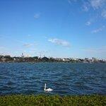 水戸市周辺のバス釣りポイント8選!初めて行く人はどこがおすすめ?【釣り場情報】