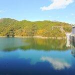 高知県のバス釣りポイント8選!初めて行く人はどこがおすすめ?【釣り場情報】