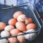 ゆで卵ダイエットとは?効果的なやり方と具体的なダイエット期間を解説!