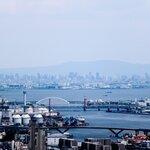 大阪府の釣り場12選!おすすめのポイント別に釣れる魚と釣果を紹介!