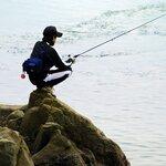 4月に釣れる魚11選!今のシーズンに海や堤防で狙える魚を紹介