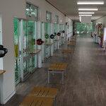 藤沢市のおすすめバッティングセンター5選!ストレス発散をしよう
