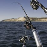 8月に釣れる魚15選!今のシーズンに海や堤防で狙える魚を紹介