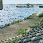 霞ヶ浦(霞水系)の水路のバス釣りポイント12選!おかっぱりの釣り場情報