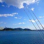 1月に釣れる魚8選!今のシーズンに海や堤防で狙える魚を紹介