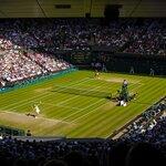 テニスの解説者16人!元プロテニスプレーヤーなど日本人解説者を紹介