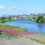 神奈川県のシーバスポイント15選!横須賀や横浜沖・湘南などの人気釣りスポット情報
