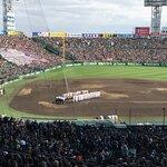 甲子園のホームラン数ランキング!歴代本塁打数が一番多いのはだれ?