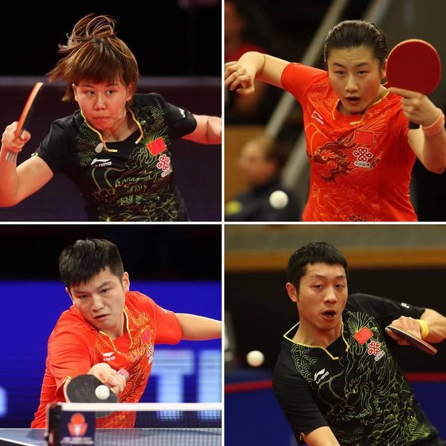 ITTF World - Instagram写真(インスタグラム)「It's down to the final 2 to fight for the last #ITTFWorldTour Men's & Women's singles titles of the year at the Swedish Open! Who will win?? 📺 tv.ITTF.com」11月19日 15時15分 (18695)