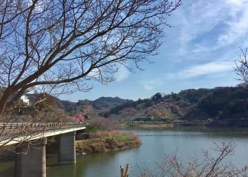 佐久間ダムでバスの数釣りを楽しもう! (100017)