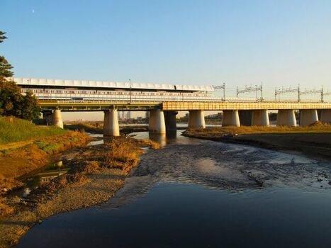 多摩川のスモールマウスバス釣り事情 (107237)