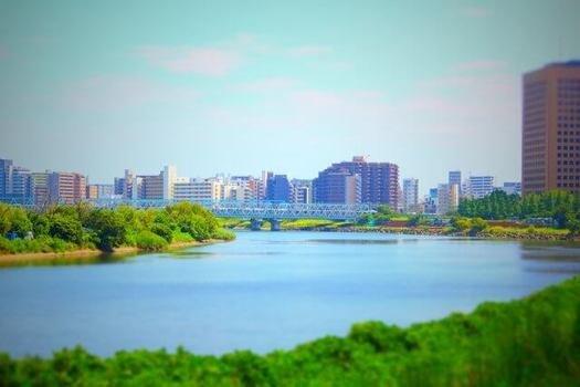多摩川のシーバス釣り事情とは? (107254)