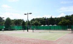 大田区ホームページ:平和の森公園テニスコート (161466)