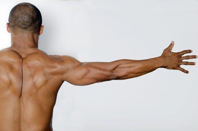 筋肉質な男性の後姿1 - No: 45204|写真素材なら「写真AC」無料(フリー)ダウンロードOK (170215)