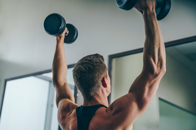 High Res Arm Back Muscles Picture — Free Images (171243)
