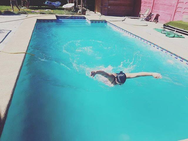 "YOLO ✌🏻 🌺 on Instagram: ""💥 🦋💥 En el agua también podemos volar #swimmer  #butterflystroke"" (26952)"