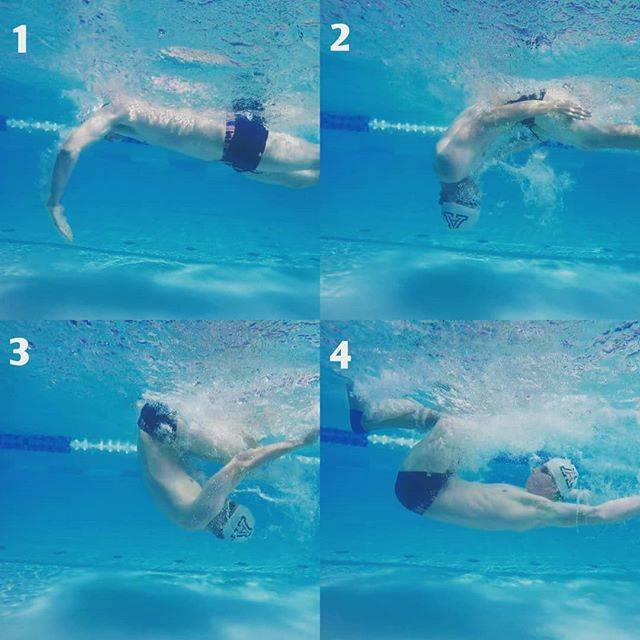 Chad Castillo, Swim Coach 🏊さんはInstagramを利用しています:「💥Freestyle and Backstroke TURNS💥 - Hate them or love them, if you train in a pool you have to negotiate turns. - If you are going to…」 (36716)