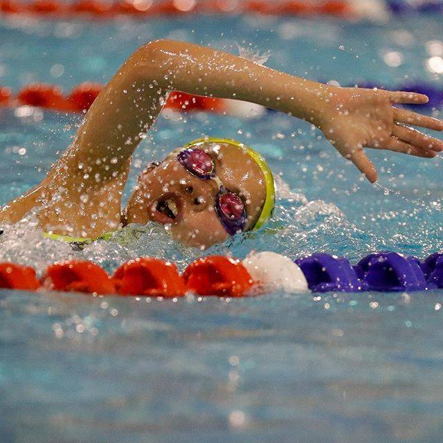 Karin BremerさんはInstagramを利用しています:「The relentless pursuit of excellence requires hours of dedication. Day in day out these young swimmers are constantly improving and chasing…」 (41564)